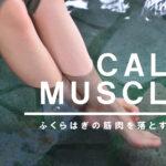 【実例】太いふくらはぎの筋肉を落とす方法【ポイントは1つ】